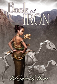 Book of Iron (preorder) cover