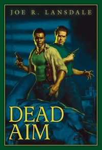 Dead Aim (ebook) cover