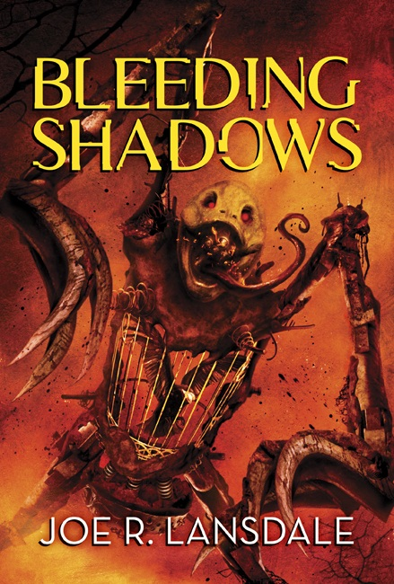 Bleeding Shadows cover