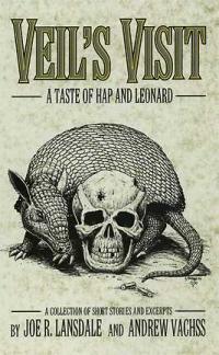 Veil's Visit cover