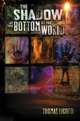 The Shadow at the Bottom of the World cover