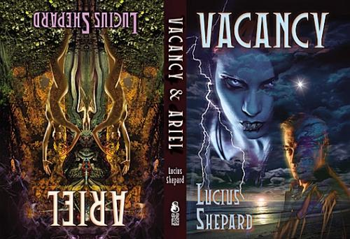 Vacancy & Ariel cover